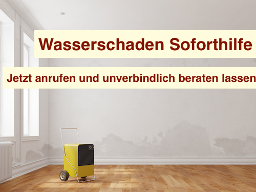 Gebäudetrocknung Berlin & Brandenburg